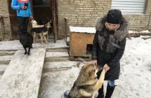 01.12.2016, Уфа, Башкортостан, помощь приюту для собак